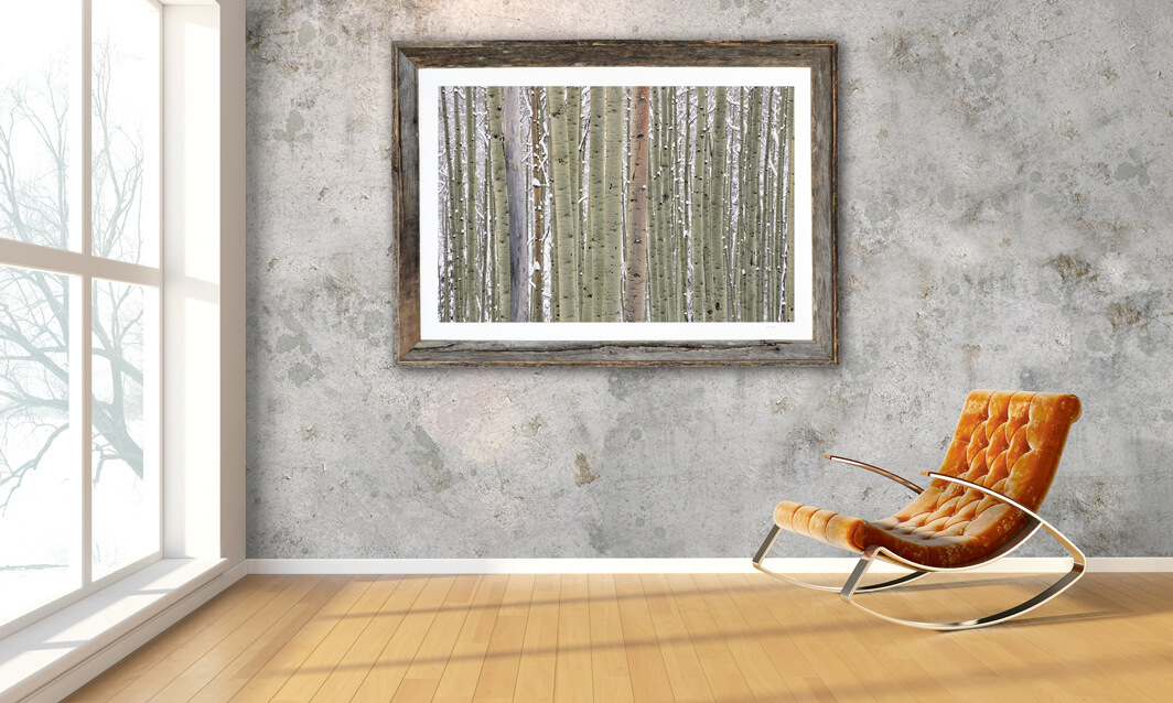 Framed print of Aspens in Snow hanging on wall.